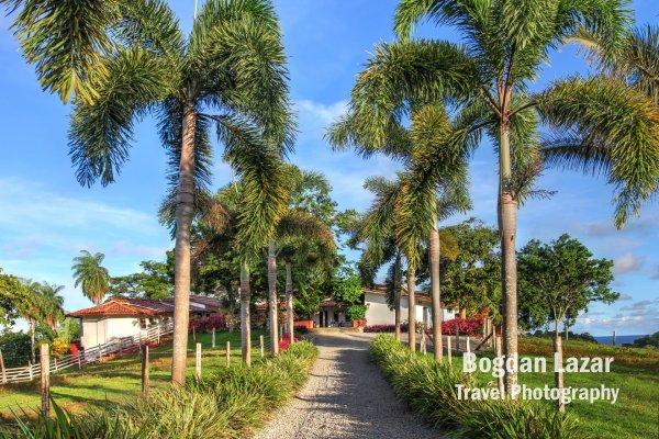 Tropical estate, Isla Boca Brava, Panama