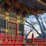 Pagoda at Narita-san Temple, near Tokyo, Japan
